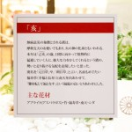 2019_Hankyu_Finish_014