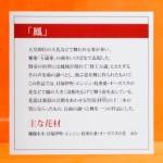 2019_Hankyu_Finish_020